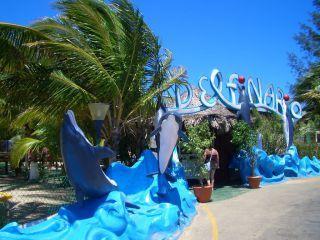Reviews- Varadero Dolphinarium