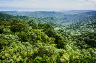 Park Narodowy Yunque