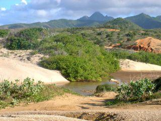 Opiniones - Isla de Margarita Jeep Tour / península de Macanao