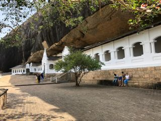 Reviews- Tour Guide Saman Fernando