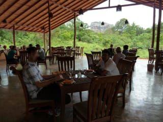 Avis - Restaurant Oak Ray
