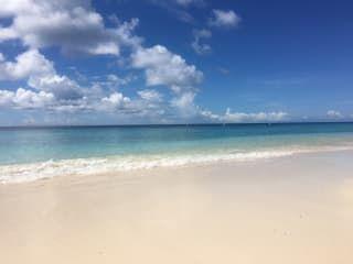 Playa Kalki / Alice in Wonderland