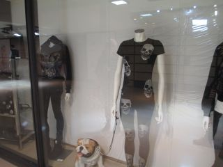 Reviews- Galeries Lafayette Department Store