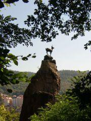 Hirschsprunga - Jump Deer