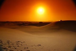 Reviews- Desert safari