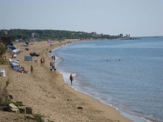 Avis - Plage Side - Sorgun