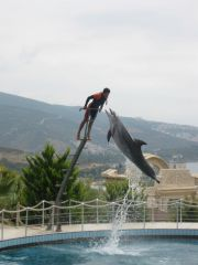 Reviews- Adaland Kusadasi Aquapark