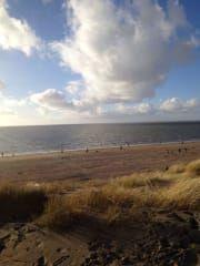 Plaża Rockanje