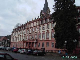 Schloss Erbach In Erbach Holidaycheck