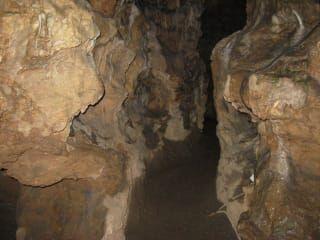 Avis - grotte Wiehler