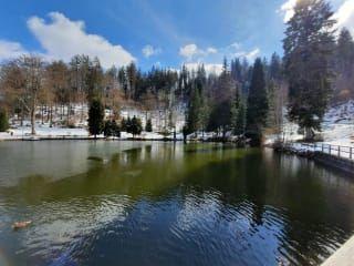 Jezioro Triberg