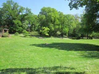 Avis - Goethepark