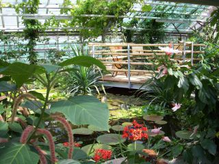 Ogród Botaniczny Potsdam