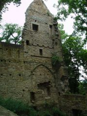 Reviews- Monastery ruins Disibodenberg Odernheim am Glan