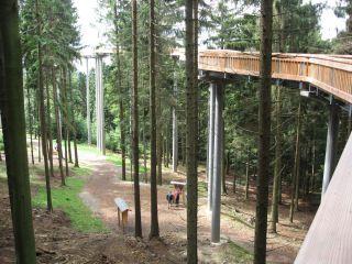 Wędrówki Waldwipfelweg