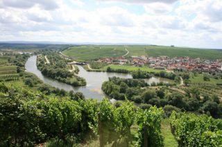 Meander rzeki Men / Mainschleife
