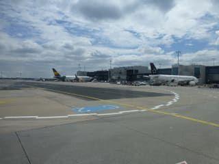 Reviews- Frankfurt am Main Airport  (FRA)