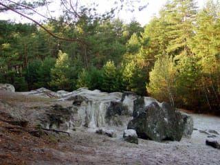 Avis - Forêt Bucksche Schweiz
