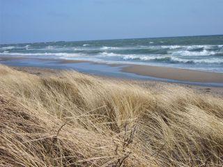 Plaża Schönhagen