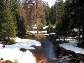 Wedrówki Resin-Torfhaus Fairytale
