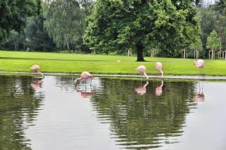 Reviews- Dortmund Westphalia Park