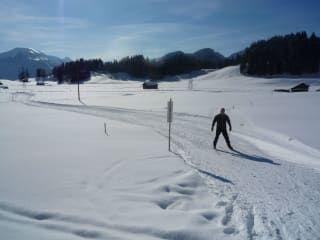 Reviews- Cross-country skiing Oberstdorf