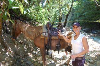 Reviews- Horse Riding Maimon