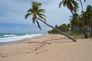 Plaża Jauá