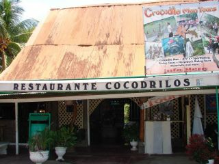 Reviews- Cocodrilos Restaurant