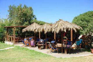 Reviews- Tam Tam Beach Bar Restaurant
