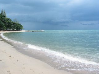 Avis - Plage Dongtan Beach