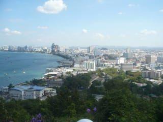 Avis - Temple de Grand Buddha