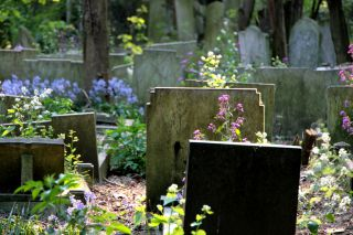 Reviews- Tower Hamlets Cemetery