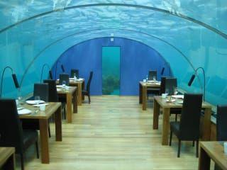 Avis - Restaurant Ithaa